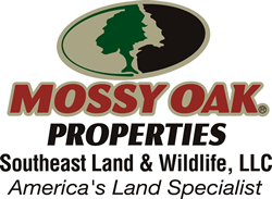 Nathan McCollum : Mossy Oak Properties Southeast Land & Wildlife