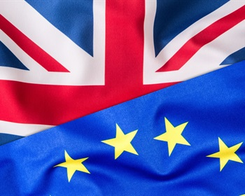 English Voters Exit with Brexit; Forisk Checks It for Timberland Investment Implications