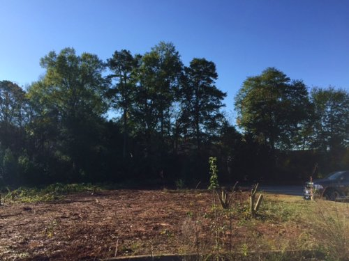 1.13 +/- Ac Lot Medical Business Pk : Cartersville : Bartow County : Georgia