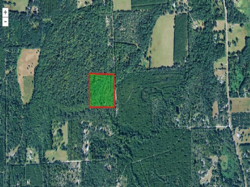 15.43 Acres With Creek (a-474) : Gainesville : Alachua County : Florida