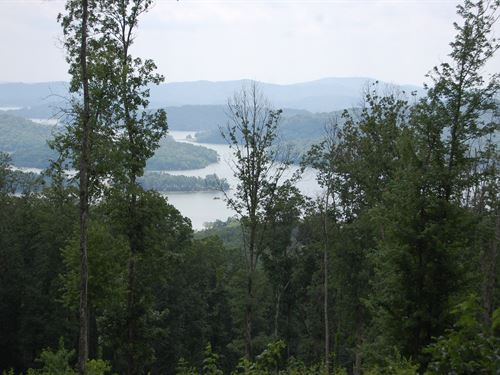 1.17 Acre Building Lot In Bayside : Bean Station : Grainger County : Tennessee