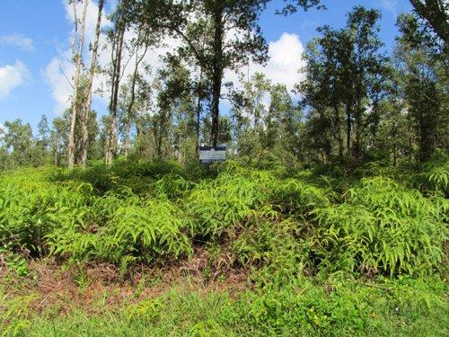 Nanawale Estates, Owner Financing : Pahoa : Hawaii County : Hawaii