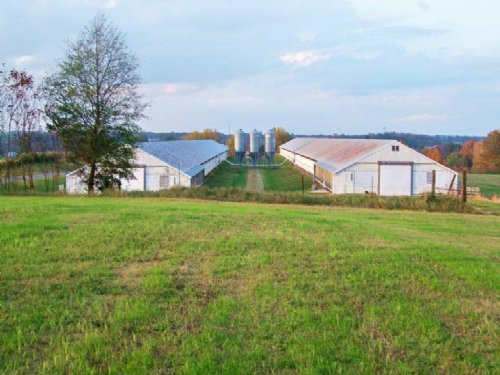 2 House Broiler Farm For Sale : Boaz : Marshall County : Alabama