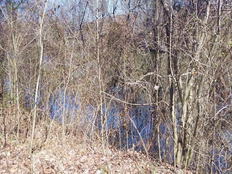 Cleared River Front Lot : Newport : Cocke County : Tennessee