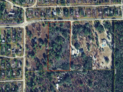 4.6 Acres - High And Dry : Bronson : Levy County : Florida