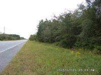 Multi-use 13 Acre Tract : Screven : Wayne County : Georgia