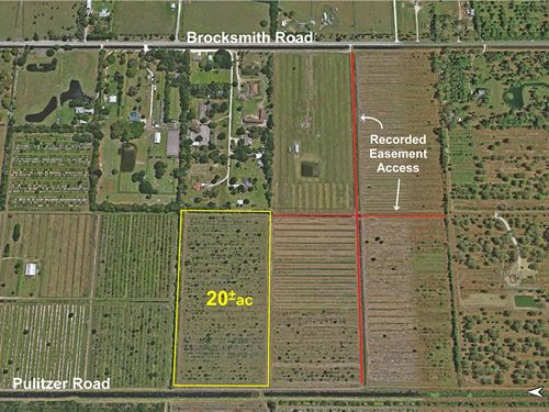 20Ac Agricultural Parcel : Fort Pierce : Saint Lucie County : Florida