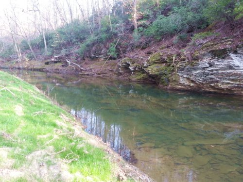 9+/- Ac On Salt Creek Bordering Tnf : Munford : Talladega County : Alabama