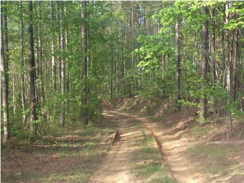 5+/- Acres Bordering Park : Sale Creek : Hamilton County : Tennessee