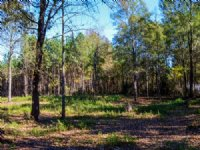 9.5 Acres In Cross Anchor Community