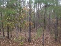 29-028 Benson 20 : Santuck : Elmore County : Alabama