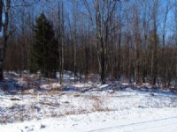5 Acres Near Several State Forests
