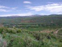 Woodland Mountain Property