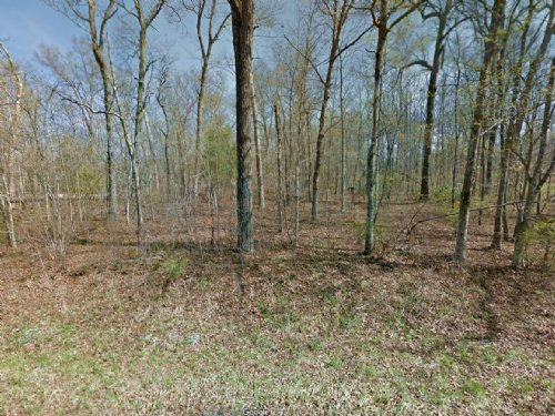 Cheap Land For Sale : Lake Tansi : Cumberland County : Tennessee