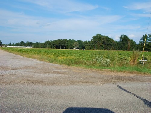 20 Acre Farm Near St. Pauls : Saint Pauls : Robeson County : North Carolina