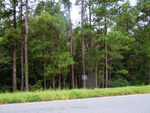 Glenns Branch Tract 1 : Statesboro : Bulloch County : Georgia