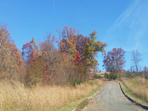 0.70 Acres In Leons Rock : Bean Station : Grainger County : Tennessee