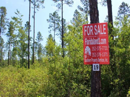 10.92 Acres - Lot 19 - Goodwin Road : Hilliard : Nassau County : Florida