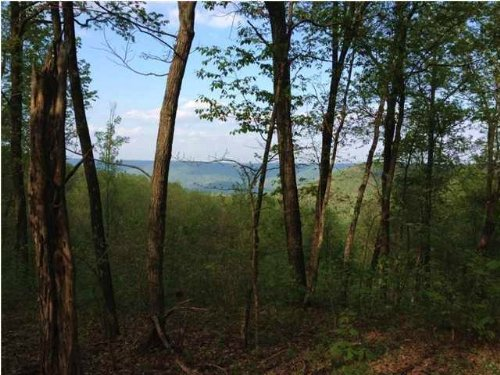 14.8+/- Acres With View And Creek : South Pittsburg : Marion County : Tennessee