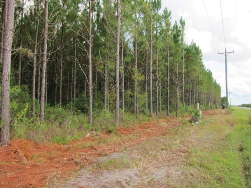 13.87 Acres-lot 4 Meng Dairy : Starke : Bradford County : Florida