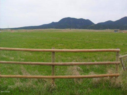 Lush Hay Acreage : Sundance : Crook County : Wyoming