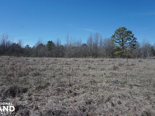 Sawyerville Homesite & Timber Land : Sawyerville : Hale County : Alabama