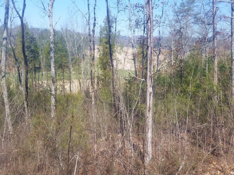 Building Lot Overlooking Golf Cours : Tazewell : Claiborne County : Tennessee