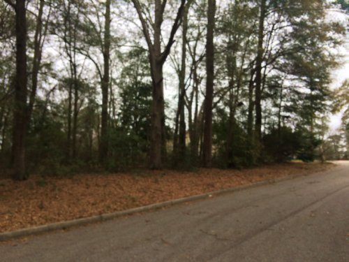 0.5 Ac Lot Perfect For A Home : Troy : Pike County : Alabama