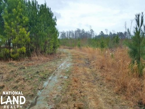Recreational Homesite & Horse Farm : Bolivia : Brunswick County : North Carolina