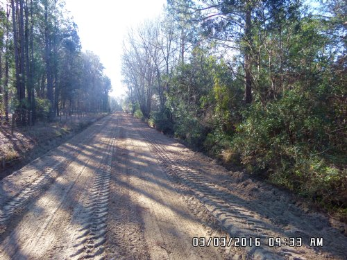 Nice Homesite With Hx As Wking Farm : Jesup : Wayne County : Georgia