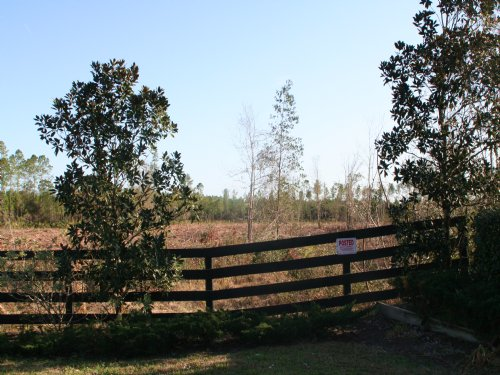 9.9 Acres, Tupelo Plantation : Callahan : Nassau County : Florida