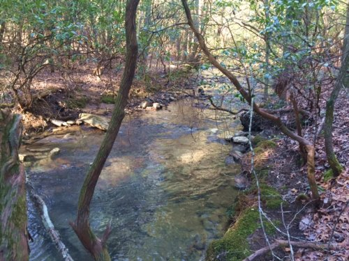 4.98+/- Acres With Year Round Creek : Dunlap : Sequatchie County : Tennessee