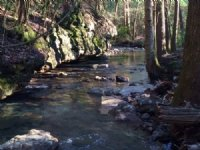 6.12+/- Acres With Year Round Creek