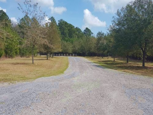 4.5 Acres Georgetown, Sc : Georgetown : South Carolina