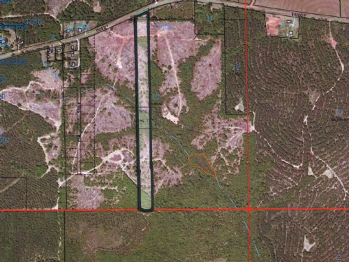 11 Ac With A Pond Site : Troy : Pike County : Alabama