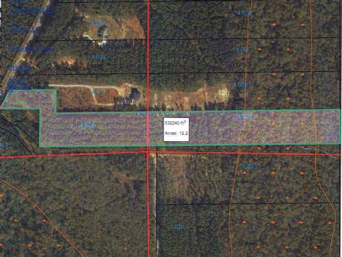 12 Acre Wooded Lot : Troy : Pike County : Alabama