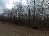 .16 Acres In Mountain Home, AR : Mountain Home : Baxter County : Arkansas