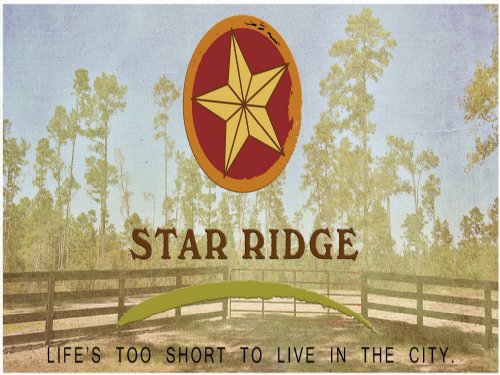 17.17 Acres Star Ridge : Livingston : Polk County : Texas