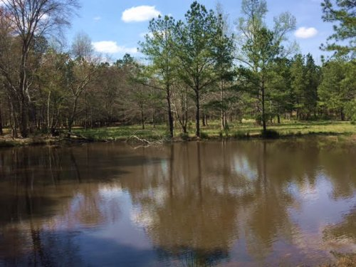 15.797 +/- Acres, 2 Small Ponds : Taylorsville : Bartow County : Georgia