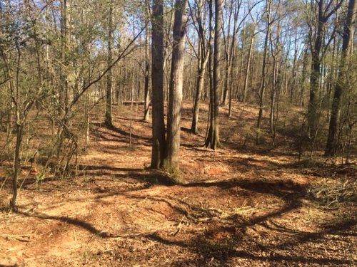 4.95 Acre Home-site : Monroe : Walton County : Georgia