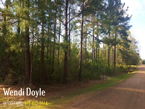 Real Estate For Sale : Forest Hill : Rapides Parish : Louisiana