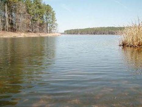 Jones Tract : Chatham : Chatham County : North Carolina