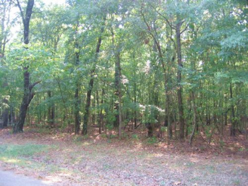 10 Ac Residential Country Lot : Canton : Madison County : Mississippi