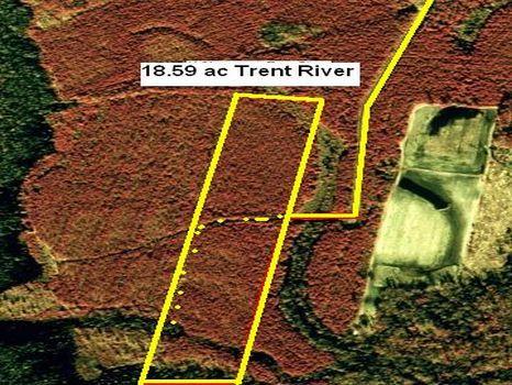 CFW Leslie White Tract : Trent River : Jones County : North Carolina