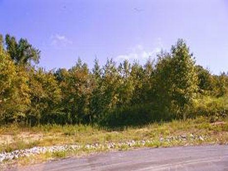 Sledge Farm Subdivision : Bunn : Franklin County : North Carolina