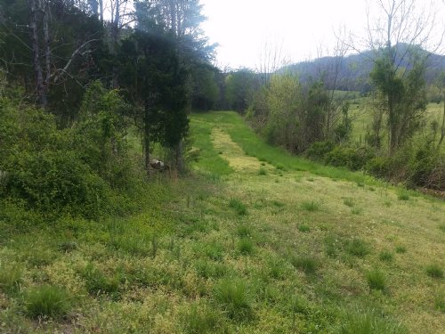 15 Acres With Cleared Site For Home : Greeneville : Greene County : Tennessee