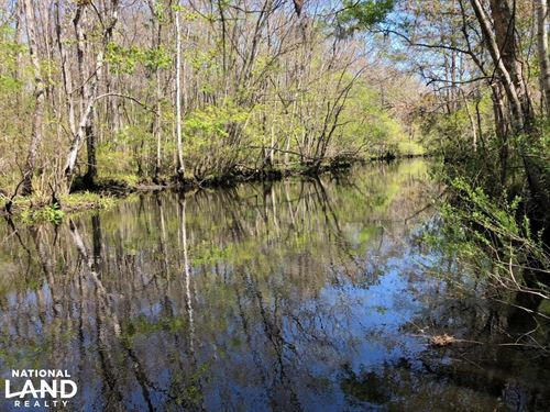 Ashepoo River Private Estate : Walterboro : Colleton County : South Carolina