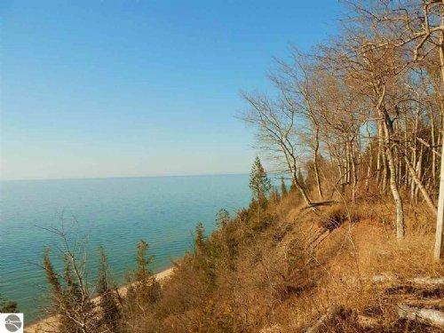 Lake Michigan Sand & Woods : Manistee : Michigan