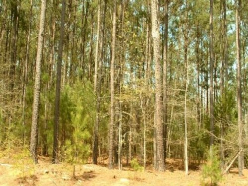 Waterfront 0.82 Acre Land For Sale : Elberton : Elbert County : Georgia
