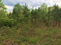 1.6+/- Acres Unrestricted